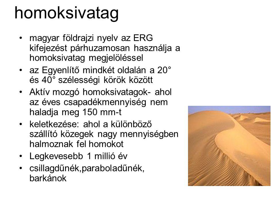 homoksivatag magyar földrajzi nyelv az ERG kifejezést párhuzamosan használja a homoksivatag megjelöléssel az Egyenlítő mindkét oldalán a 20° és 40° szélességi körök között Aktív mozgó homoksivatagok- ahol az éves csapadékmennyiség nem haladja meg 150 mm-t keletkezése: ahol a különböző szállító közegek nagy mennyiségben halmoznak fel homokot Legkevesebb 1 millió év csillagdűnék,paraboladűnék, barkánok