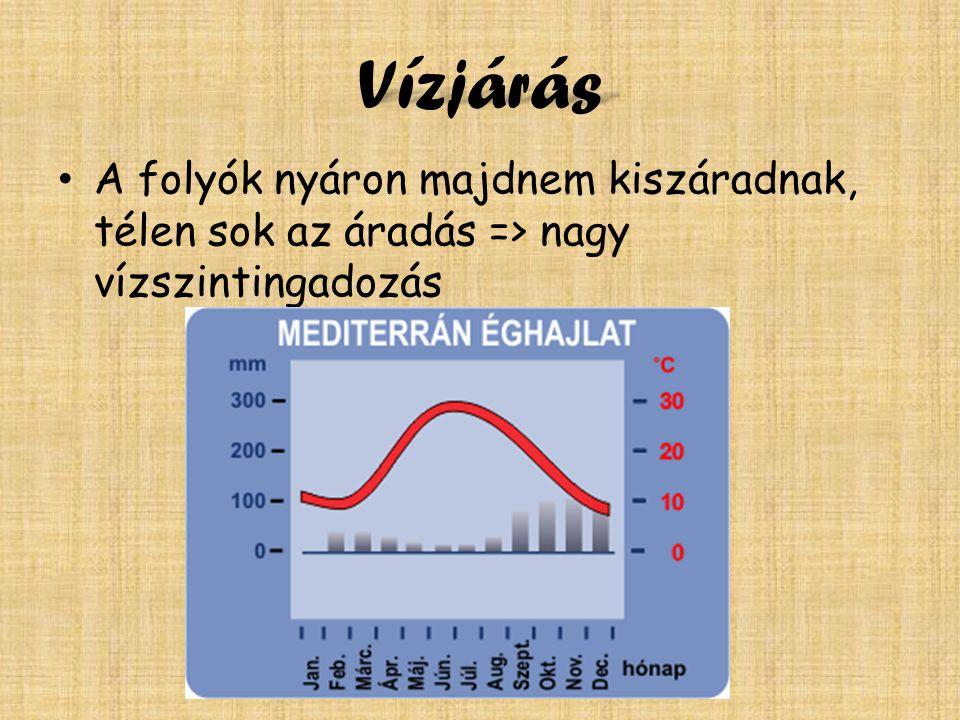 Vízjárás A folyók nyáron majdnem kiszáradnak, télen sok az áradás => nagy vízszintingadozás