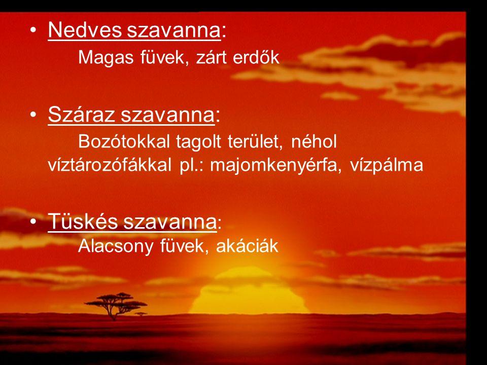 Nedves szavanna: Magas füvek, zárt erdők Száraz szavanna: Bozótokkal tagolt terület, néhol víztározófákkal pl.: majomkenyérfa, vízpálma Tüskés szavann