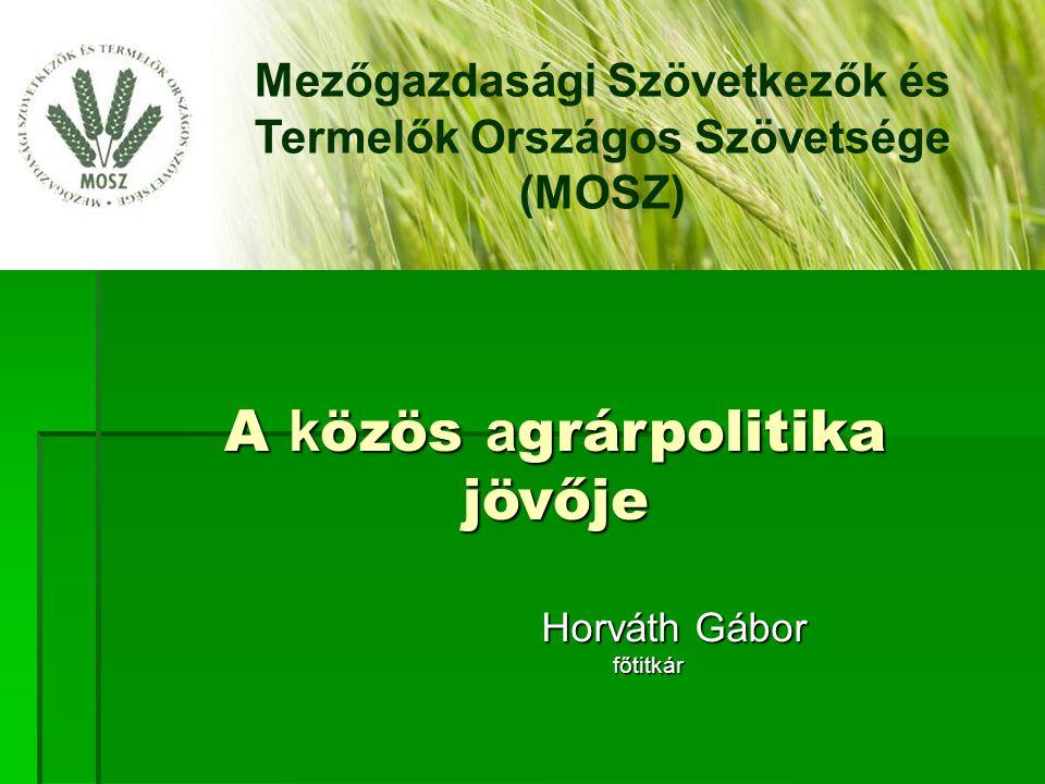  Fő cél a vidék gazdasági hátterének megteremtése és fenntartása /kiemelten a mezőgazdasági termék és annak feldolgozása/  A kedvezőtlen éghajlatváltozás miatt vízkészletezés, öntözés segítése  Mérsékelt, vagy csökkenő környezetterhelés mellett folytatott termelés ösztönzése, technológiák meghonosítása  Az infrastrukturális hátrányok csökkentése /utak/  Versenyképességi és esélyegyenlőségi kérdés  Piac méretű termelői értékesítő, beszerző szervezeteknek kockázati tőke juttatása Mezőgazdasági Szövetkezők és Termelők Országos Szövetsége Vidékfejlesztés