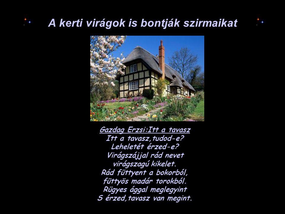 A kerti virágok is bontják szirmaikat Gazdag Erzsi:Itt a tavasz Itt a tavasz,tudod-e? Leheletét érzed-e? Virágszájjal rád nevet virágszagú kikelet. Rá