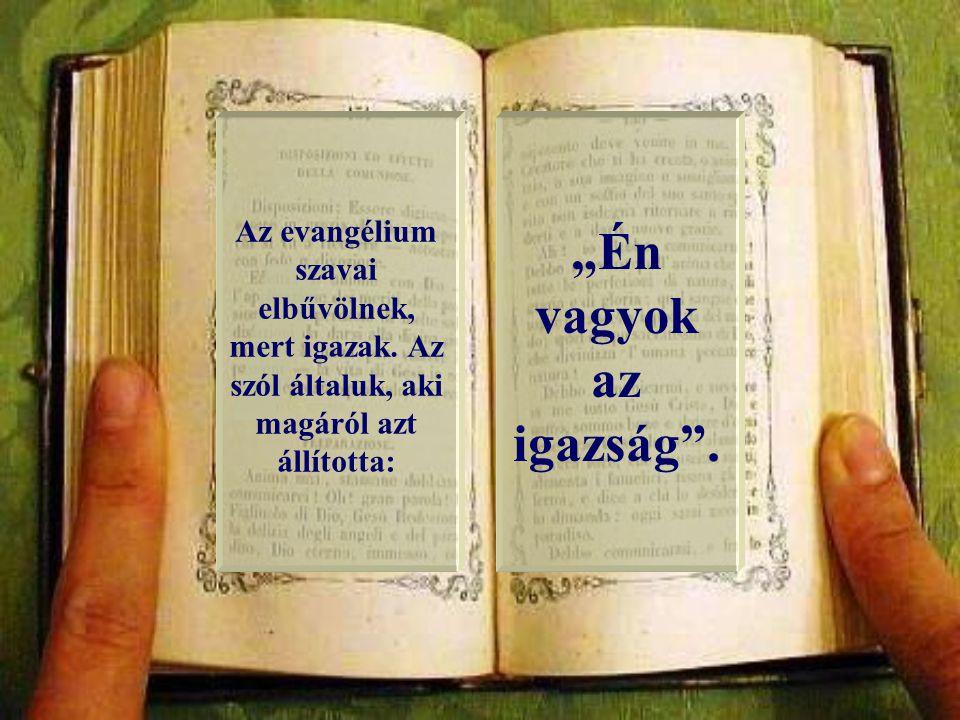 """""""Az igazság Lelke elvezet titeket a teljes igazságra. (Jn 16,13)."""