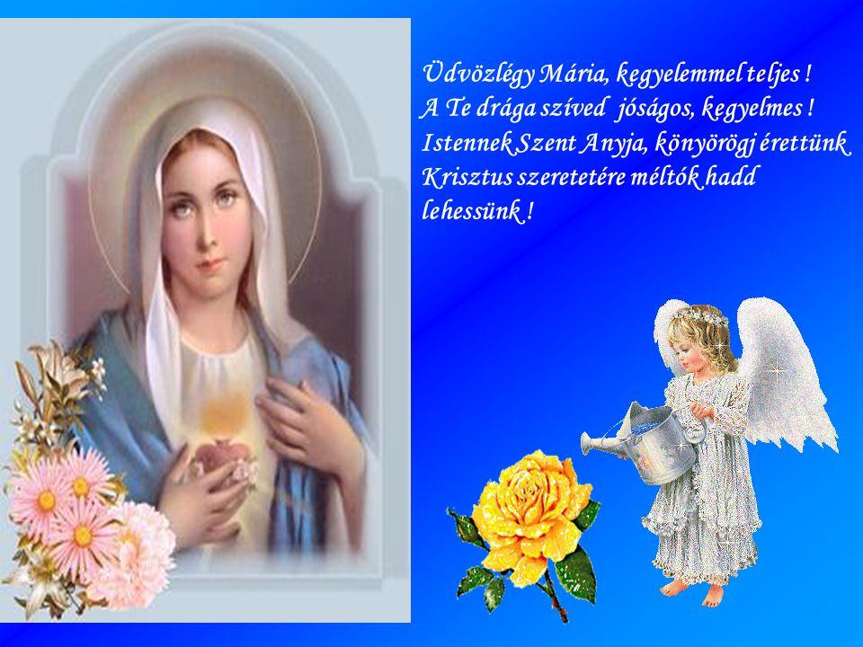 Üdvözlégy Mária, mindnyájunknak anyja .Kérünk szeress minket, ez szívünk óhaja .