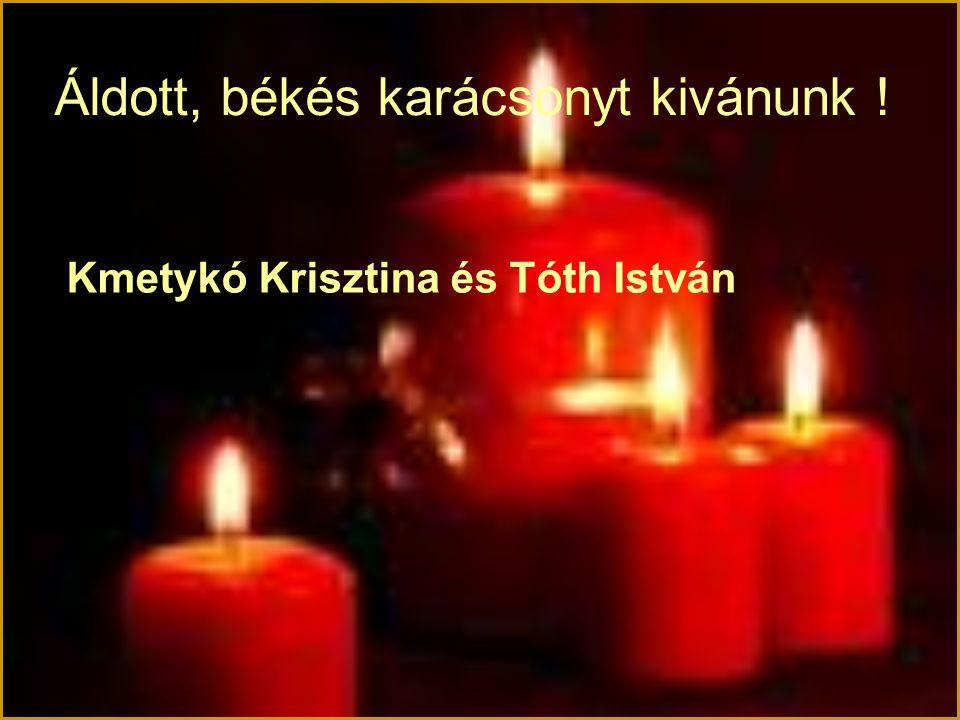 Áldott, békés karácsonyt kivánunk ! Kmetykó Krisztina és Tóth István