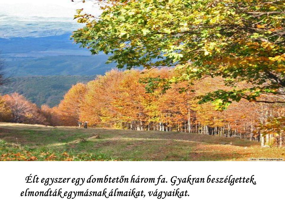 Élt egyszer egy dombtetőn három fa. Gyakran beszélgettek, elmondták egymásnak álmaikat, vágyaikat.