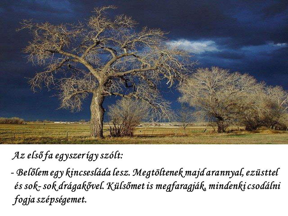 Az első fa egyszer így szólt: - Belőlem egy kincsesláda lesz.