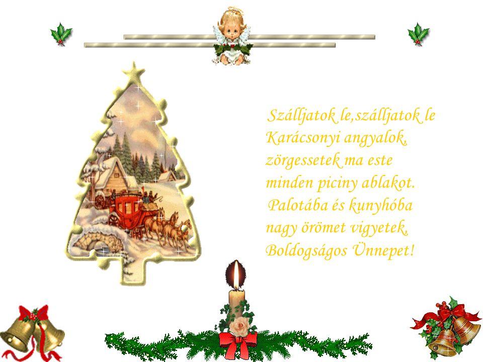 Mennyben lakó én Istenem, könyörgök légy mindig velem, a te neved sóhajtozom, Karácsonyért imádkozom. Zárd be szívem a rossz előtt, a jóra adj elég er