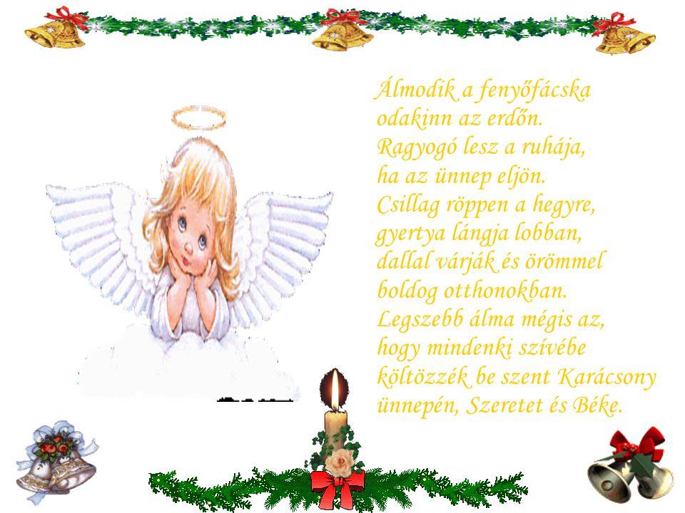 Szálljatok le,szálljatok le Karácsonyi angyalok, zörgessetek ma este minden piciny ablakot. Palotába és kunyhóba nagy örömet vigyetek, Boldogságos Ünn
