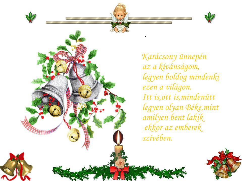 Karácsony ünnepén az a kívánságom, legyen boldog mindenki ezen a világon.