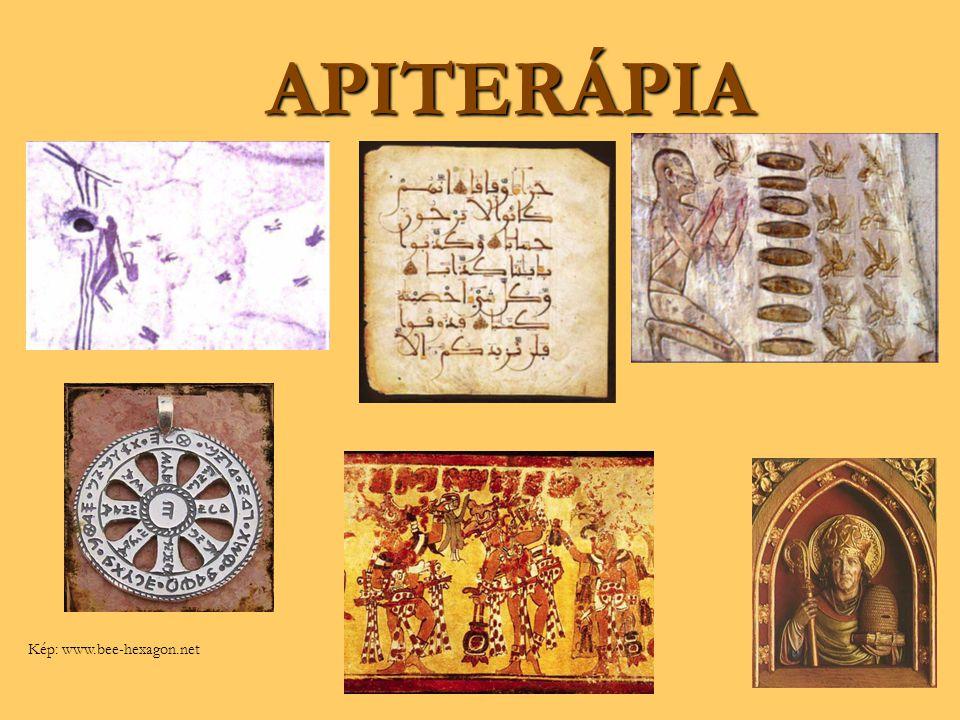 AROMATERÁPIA Kép: www.tisserand.com/history_aromatherapy.html ; greenbydesign.com/.../aromatherapy-demystified/ ; www.azer.com/.../91_articles/91_scents.htmlwww.tisserand.com/history_aromatherapy.htmlgreenbydesign.com/.../aromatherapy-demystified/www.azer.com/.../91_articles/91_scents.html