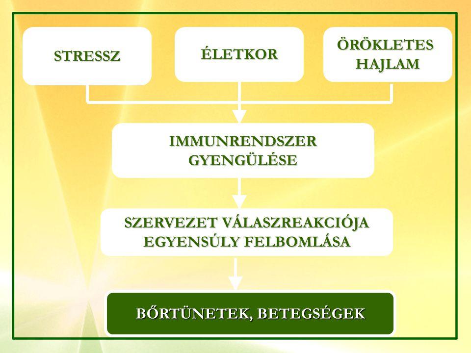 BIONET ANTIBAKTERIÁLIS FOLYÉKONY SZAPPAN BIONET ANTIBAKTERIÁLIS FOLYÉKONY SZAPPAN  A BŐR ÖKO-RENDSZERÉT FENNTARTÓ,  BŐRÁPOLÓ,  SEJTÉPÍTŐ, BŐRSIMÍTÓ,  TERMÉSZETES HIDRATÁLÓ, HYPOALLERGÉN  ANTIBAKTERIÁLIS  IRRITÁCIÓT CSÖKKENTŐ  HÁMOSÍTÓ, A BŐRSEJTEK KÉPZŐDÉSÉT SEGÍTŐ