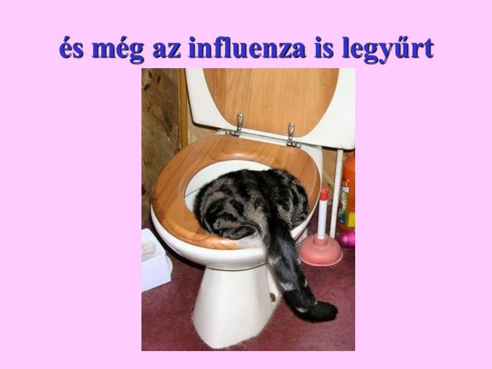 és még az influenza is legyűrt