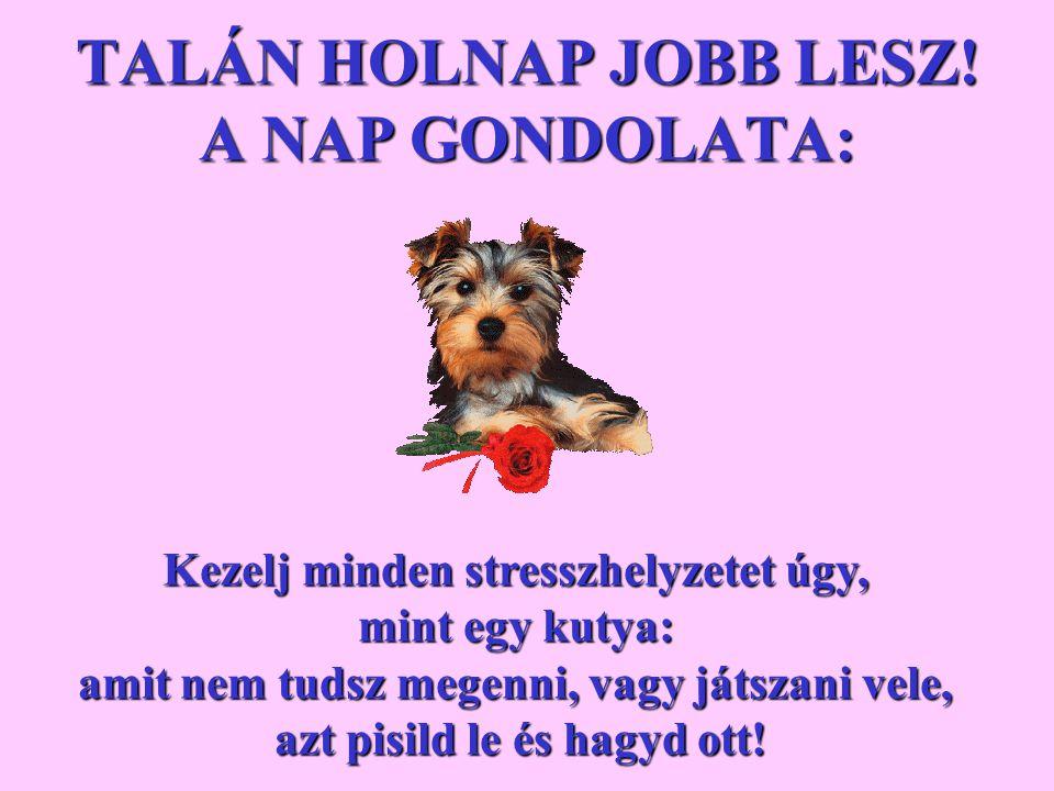 TALÁN HOLNAP JOBB LESZ.