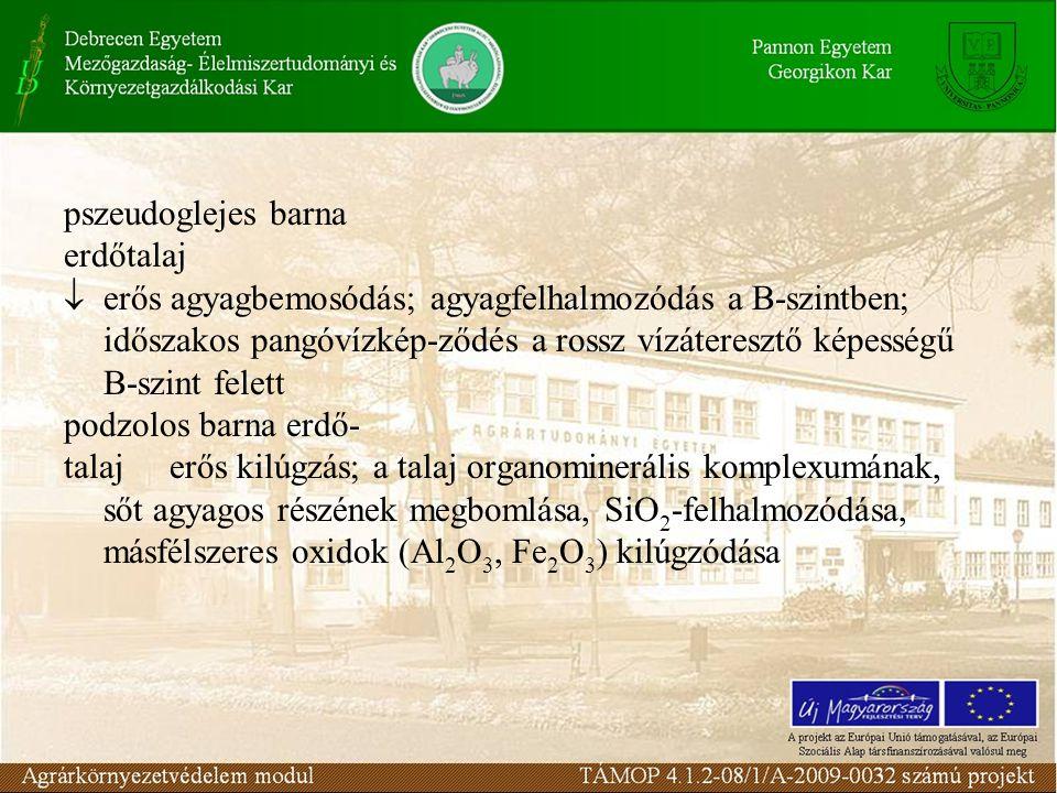 pszeudoglejes barna erdőtalaj  erős agyagbemosódás; agyagfelhalmozódás a B-szintben; időszakos pangóvízkép-ződés a rossz vízáteresztő képességű B-szint felett podzolos barna erdő- talajerős kilúgzás; a talaj organominerális komplexumának, sőt agyagos részének megbomlása, SiO 2 -felhalmozódása, másfélszeres oxidok (Al 2 O 3, Fe 2 O 3 ) kilúgzódása