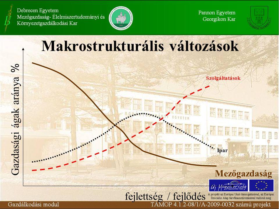 Makrostrukturális változások fejlettség / fejlődés Gazdasági ágak aránya % Mezőgazdaság Ipar Szolgáltatások