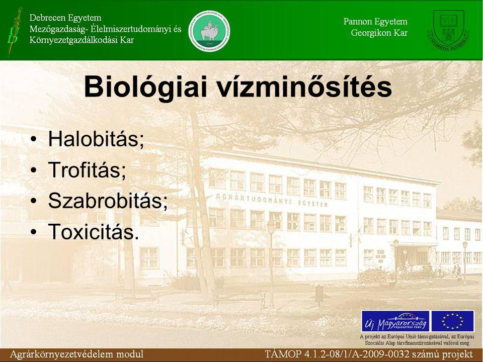 Vízminőségi kategóriák V.V. osztály: erősen szennyezett víz.