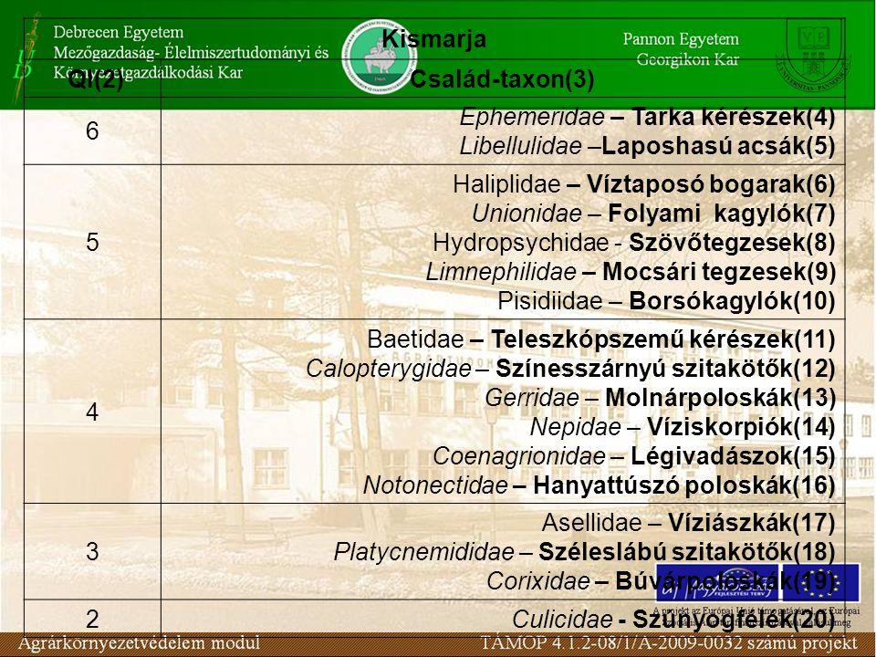 Kismarja QI(2)Család-taxon(3) 6 Ephemeridae – Tarka kérészek(4) Libellulidae –Laposhasú acsák(5) 5 Haliplidae – Víztaposó bogarak(6) Unionidae – Folya