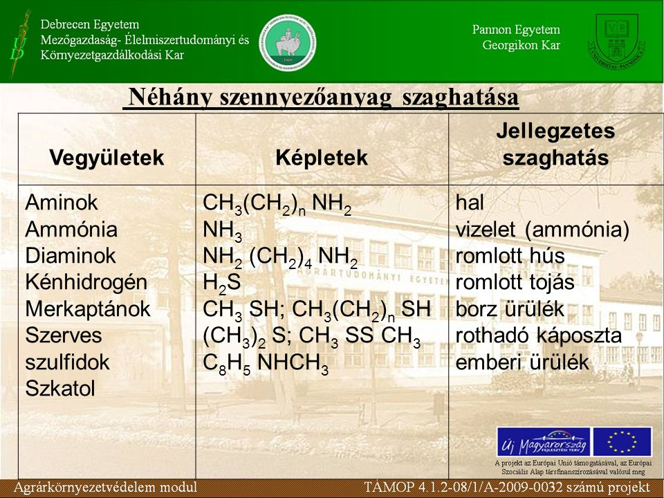 Néhány szennyezőanyag szaghatása VegyületekKépletek Jellegzetes szaghatás Aminok Ammónia Diaminok Kénhidrogén Merkaptánok Szerves szulfidok Szkatol CH 3 (CH 2 ) n NH 2 NH 3 NH 2 (CH 2 ) 4 NH 2 H 2 S CH 3 SH; CH 3 (CH 2 ) n SH (CH 3 ) 2 S; CH 3 SS CH 3 C 8 H 5 NHCH 3 hal vizelet (ammónia) romlott hús romlott tojás borz ürülék rothadó káposzta emberi ürülék