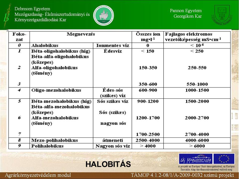 HALOBITÁS