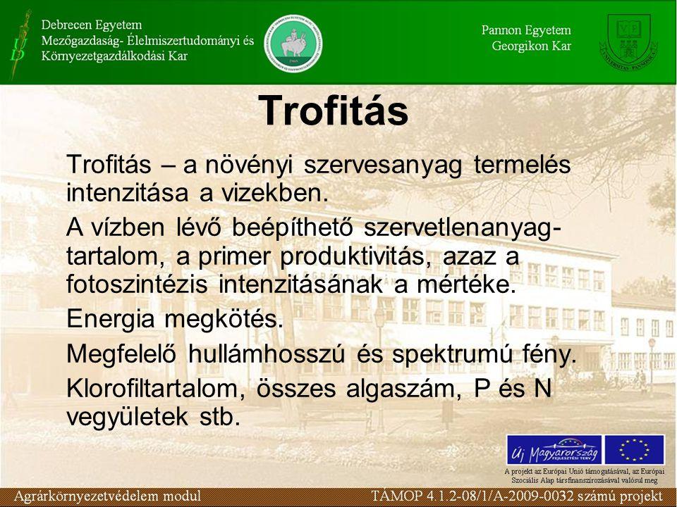 Trofitás Trofitás – a növényi szervesanyag termelés intenzitása a vizekben. A vízben lévő beépíthető szervetlenanyag- tartalom, a primer produktivitás
