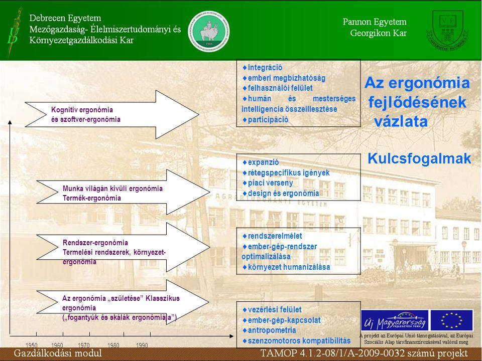 """Az ergonómia fejlődésének vázlata Kognitív ergonómia és szoftver-ergonómia Munka világán kívüli ergonómia Termék-ergonómia Rendszer-ergonómia Termelési rendszerek, környezet- ergonómia Az ergonómia """"születése Klasszikus ergonómia (""""fogantyúk és skálák ergonómiája )  integráció  emberi megbízhatóság  felhasználói felület  humán és mesterséges intelligencia összeillesztése  participáció  expanzió  rétegspecifikus igények  piaci verseny  design és ergonómia  rendszerelmélet  ember-gép-rendszer optimalizálása  környezet humanizálása  vezérlési felület  ember-gép-kapcsolat  antropometria  szenzomotoros kompatibilitás 1950 1960 1970 1980 1990 Kulcsfogalmak"""