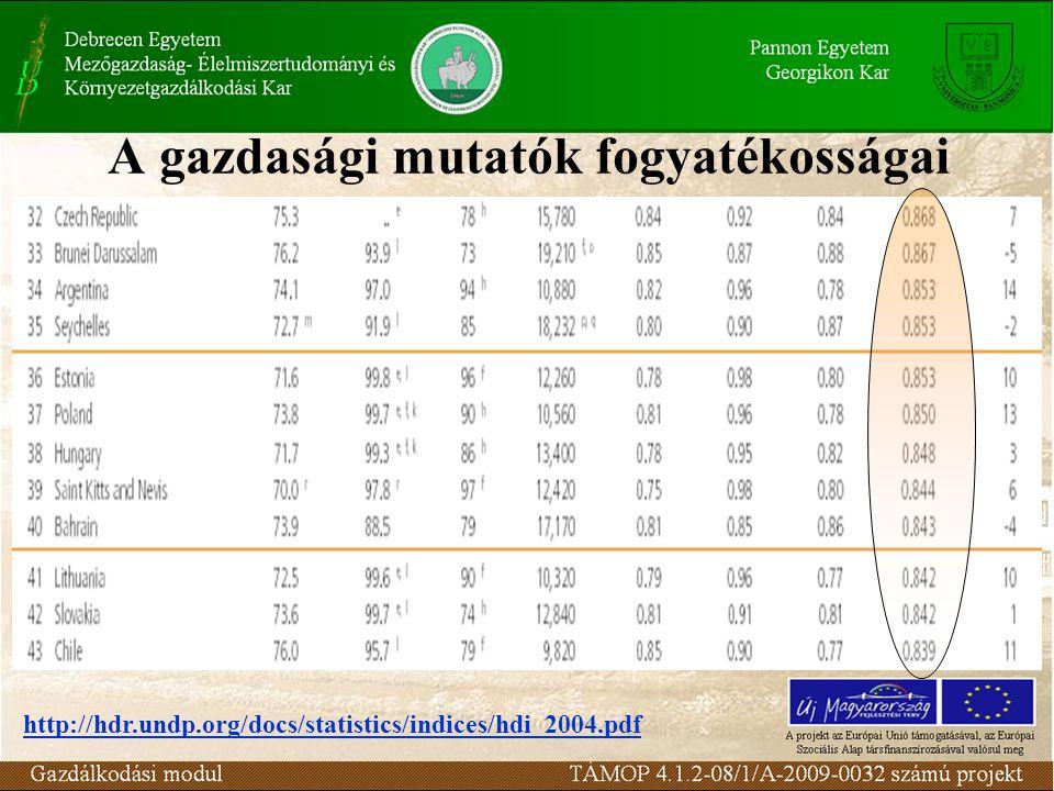 A gazdasági mutatók fogyatékosságai http://hdr.undp.org/docs/statistics/indices/hdi_2004.pdf