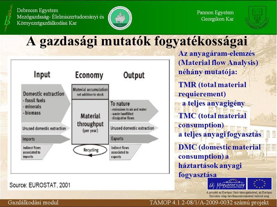 A gazdasági mutatók fogyatékosságai Az anyagáram-elemzés Az anyagáram-elemzés (Material flow Analysis) néhány mutatója: TMR TMR (total material requie