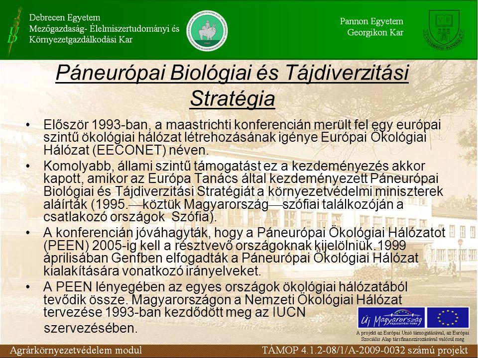 Páneurópai Biológiai és Tájdiverzitási Stratégia Először 1993-ban, a maastrichti konferencián merült fel egy európai szintű ökológiai hálózat létrehoz