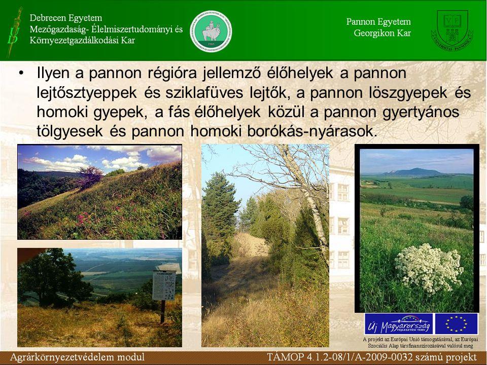 Ilyen a pannon régióra jellemző élőhelyek a pannon lejtősztyeppek és sziklafüves lejtők, a pannon löszgyepek és homoki gyepek, a fás élőhelyek közül a