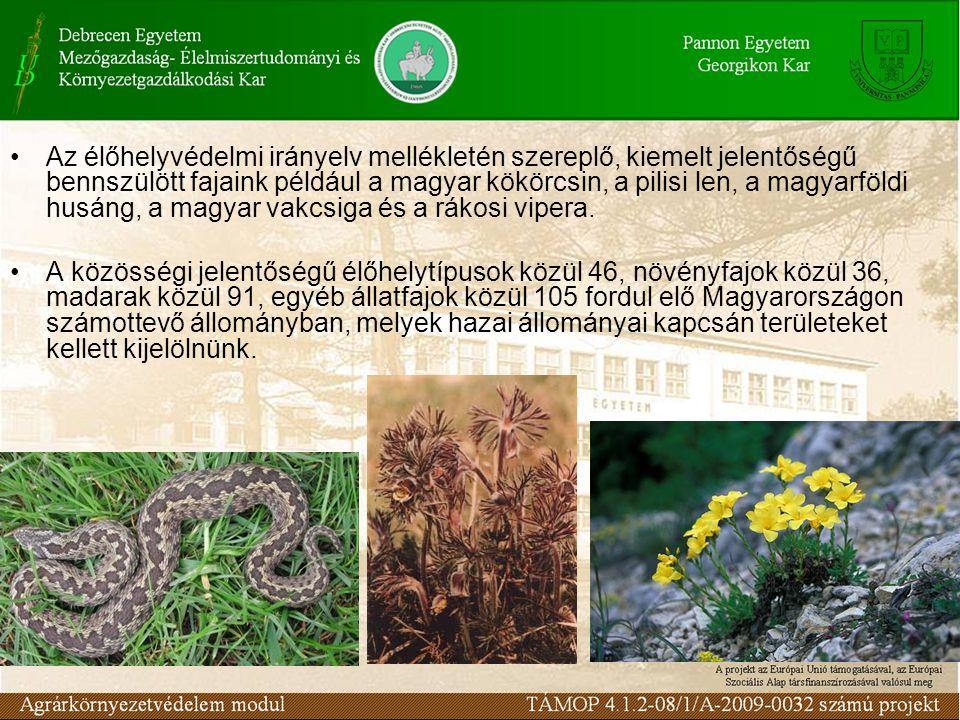 Az élőhelyvédelmi irányelv mellékletén szereplő, kiemelt jelentőségű bennszülött fajaink például a magyar kökörcsin, a pilisi len, a magyarföldi husán