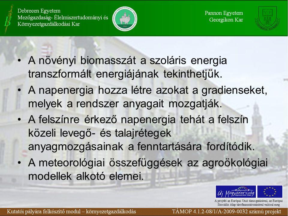 A növényi biomasszát a szoláris energia transzformált energiájának tekinthetjük.