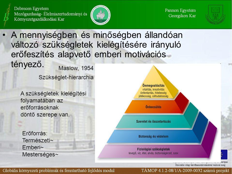 A mennyiségben és minőségben állandóan változó szükségletek kielégítésére irányuló erőfeszítés alapvető emberi motivációs tényező. Maslow, 1954 A szük