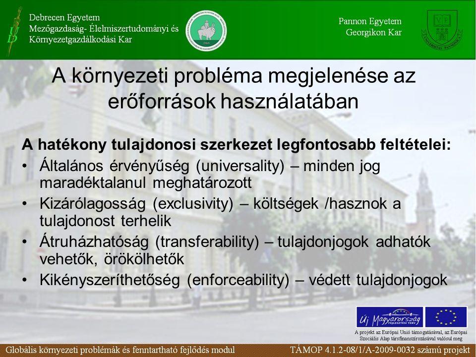 A környezeti probléma megjelenése az erőforrások használatában A hatékony tulajdonosi szerkezet legfontosabb feltételei: Általános érvényűség (univers