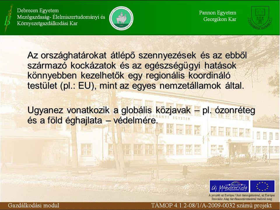 Az országhatárokat átlépő szennyezések és az ebből származó kockázatok és az egészségügyi hatások könnyebben kezelhetők egy regionális koordináló testület (pl.: EU), mint az egyes nemzetállamok által.