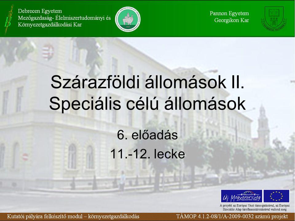 Szárazföldi állomások II. Speciális célú állomások 6. előadás 11.-12. lecke
