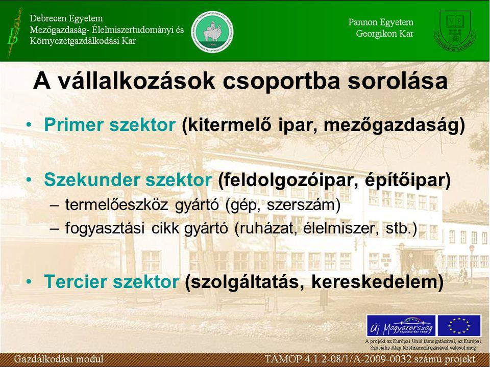A vállalkozások csoportba sorolása Primer szektor (kitermelő ipar, mezőgazdaság) Szekunder szektor (feldolgozóipar, építőipar) –termelőeszköz gyártó (