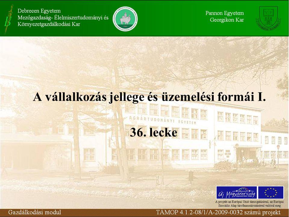 A vállalkozás jellege és üzemelési formái I. 36. lecke