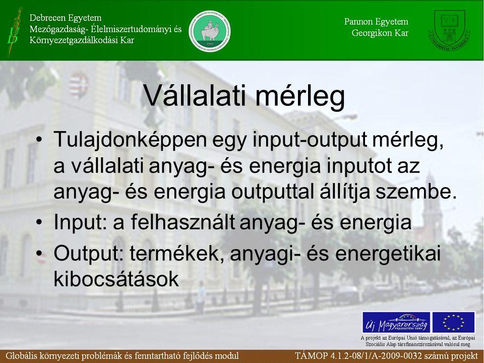 Vállalati mérleg Tulajdonképpen egy input-output mérleg, a vállalati anyag- és energia inputot az anyag- és energia outputtal állítja szembe. Input: a