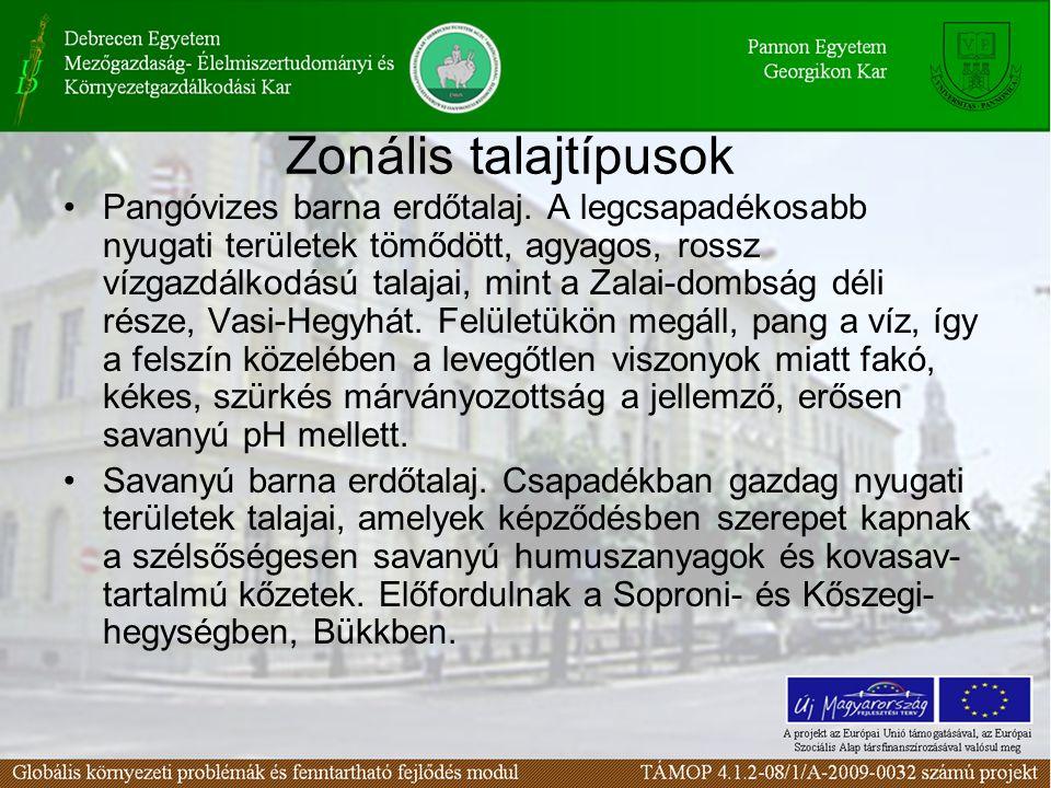 Zonális talajtípusok Pangóvizes barna erdőtalaj. A legcsapadékosabb nyugati területek tömődött, agyagos, rossz vízgazdálkodású talajai, mint a Zalai-d