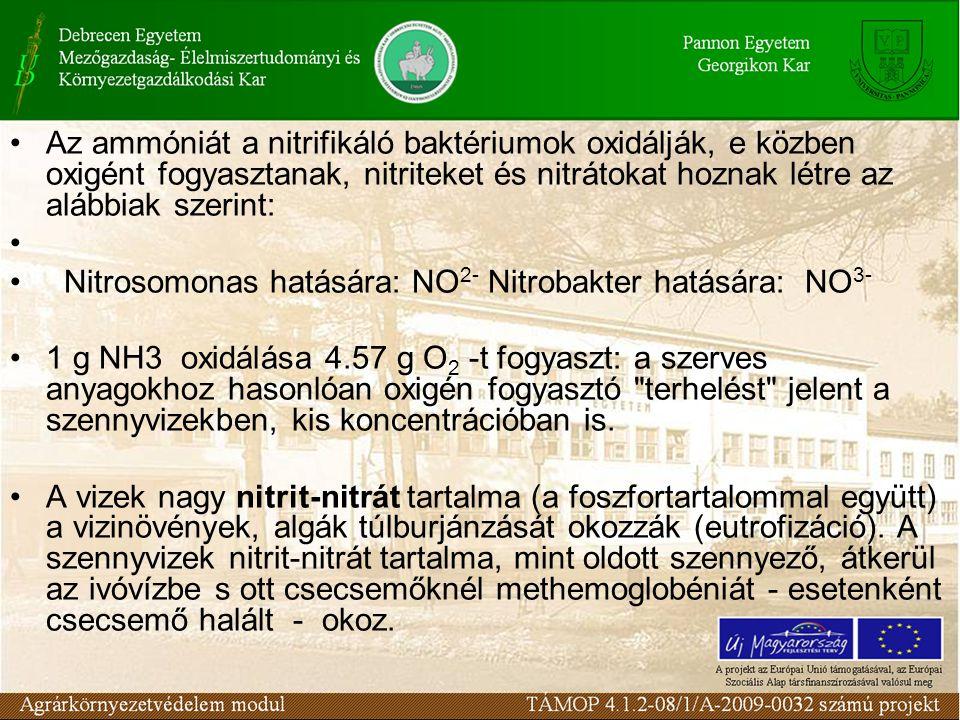 Az ammóniát a nitrifikáló baktériumok oxidálják, e közben oxigént fogyasztanak, nitriteket és nitrátokat hoznak létre az alábbiak szerint: Nitrosomona