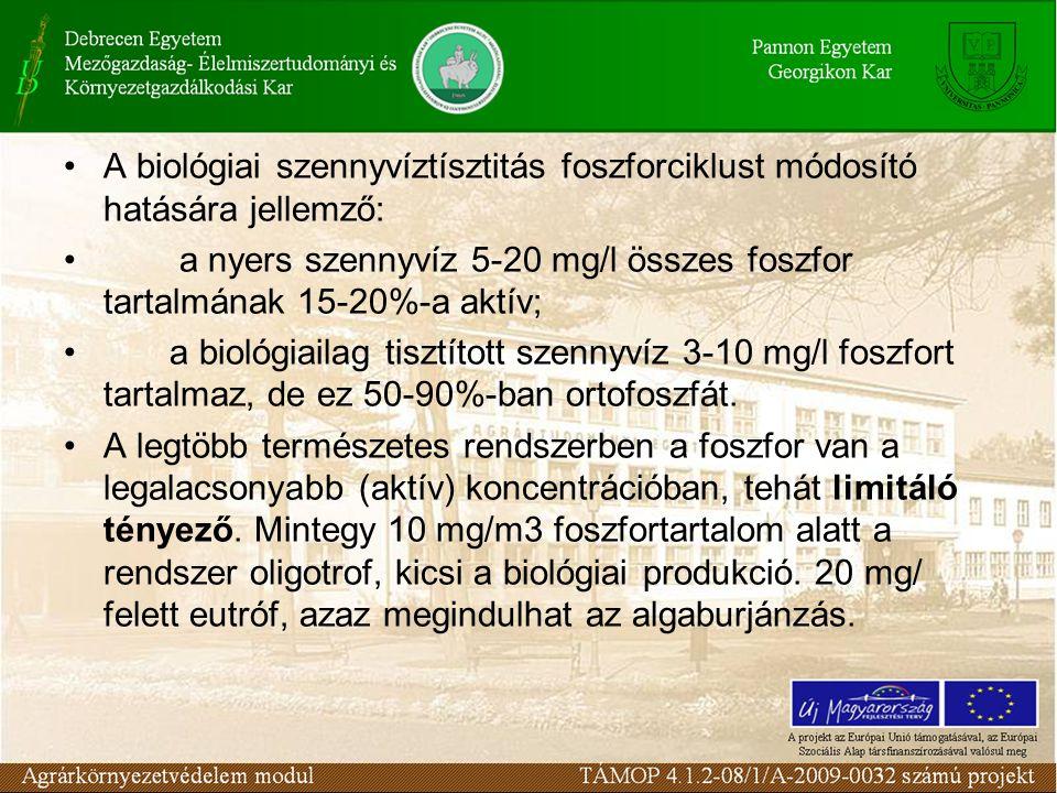 A biológiai szennyvíztísztitás foszforciklust módosító hatására jellemző: a nyers szennyvíz 5-20 mg/l összes foszfor tartalmának 15-20%-a aktív; a bio