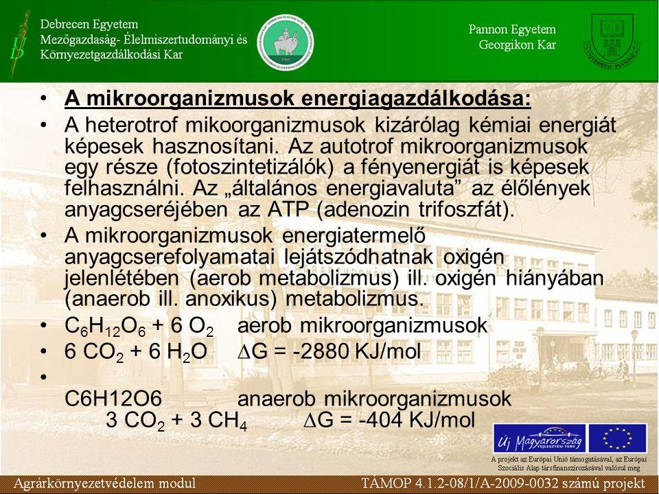 A mikroorganizmusok energiagazdálkodása: A heterotrof mikoorganizmusok kizárólag kémiai energiát képesek hasznosítani. Az autotrof mikroorganizmusok e