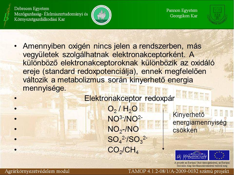 Amennyiben oxigén nincs jelen a rendszerben, más vegyületek szolgálhatnak elektronakceptorként. A különböző elektronakceptoroknak különbözik az oxidál