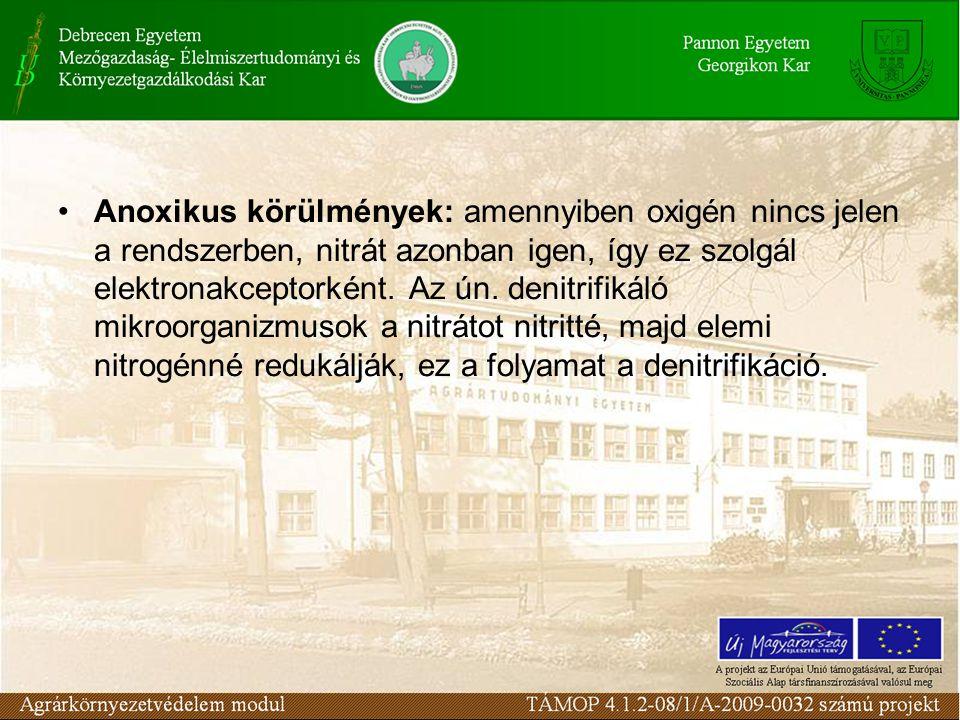 Anoxikus körülmények: amennyiben oxigén nincs jelen a rendszerben, nitrát azonban igen, így ez szolgál elektronakceptorként. Az ún. denitrifikáló mikr