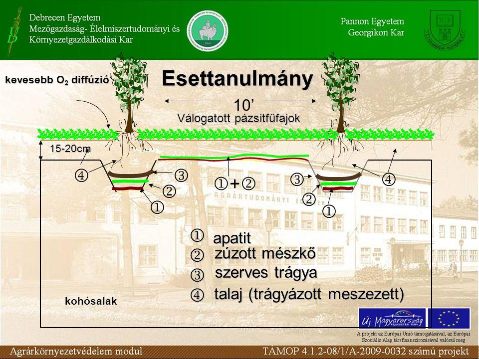 10' kohósalak 15-20cm          apatit zúzott mészkő szerves trágya talaj (trágyázott meszezett) Válogatott pázsitfűfajok ++ kevesebb O 2