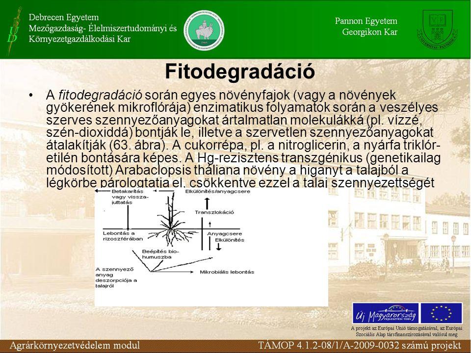 A fitodegradáció során egyes növényfajok (vagy a növények gyökerének mikroflórája) enzimatikus folyamatok során a veszélyes szerves szennyezőanyagokat