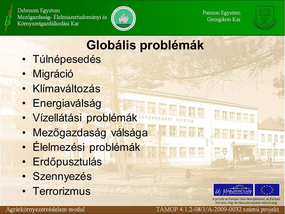 Globális problémák 1992-ben 360 jelentős természeti katasztrófát regisztráltak a világon, 2001-ben pedig 700-at. A 20. században a Föld felszínének át