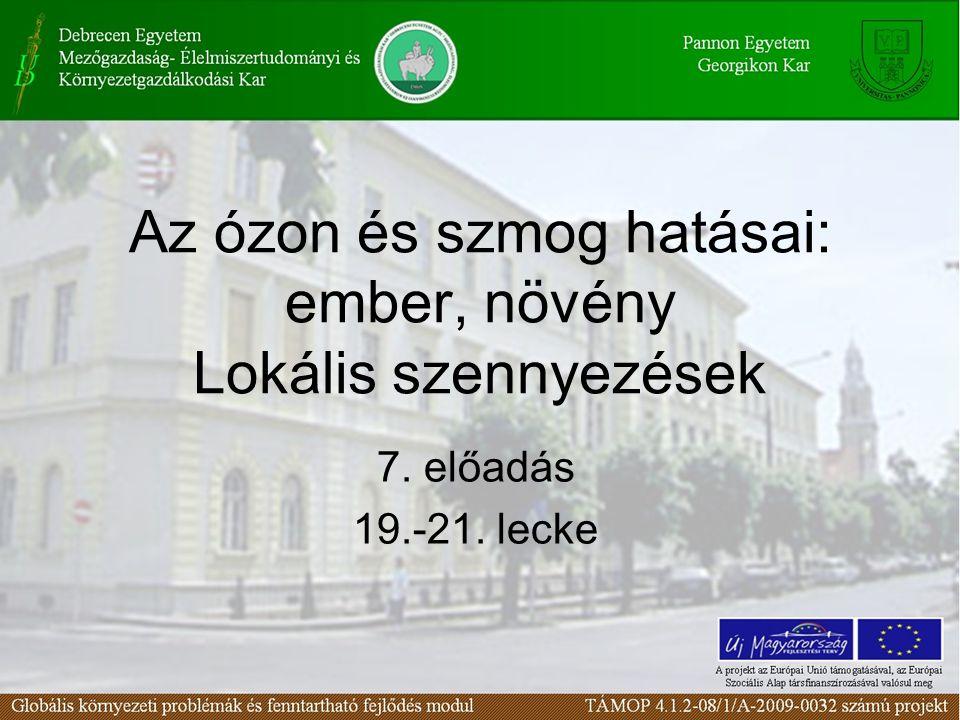Az ózon és szmog hatásai: ember, növény Lokális szennyezések 7. előadás 19.-21. lecke