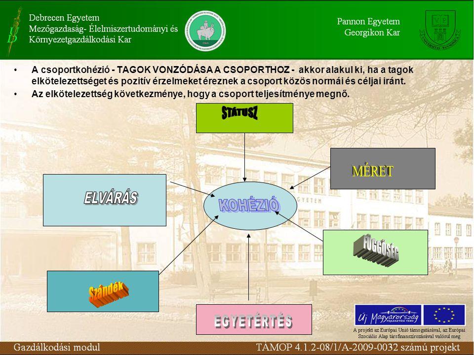 A csoportkohézió - TAGOK VONZÓDÁSA A CSOPORTHOZ - akkor alakul ki, ha a tagok elkötelezettséget és pozitív érzelmeket éreznek a csoport közös normái és céljai iránt.