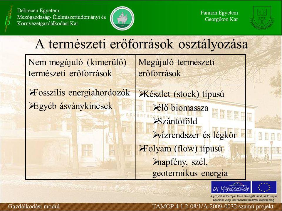 A természeti erőforrások osztályozása Nem megújuló (kimerülő) természeti erőforrások Megújuló természeti erőforrások  Fosszilis energiahordozók  Egyéb ásványkincsek  Készlet (stock) típusú  élő biomassza  Szántóföld  vízrendszer és légkör  Folyam (flow) típusú  napfény, szél, geotermikus energia